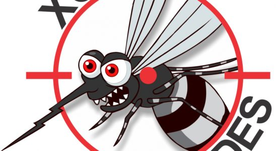 Dengue-aplicativo-paulista301215f1
